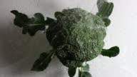 Washing the broccoli