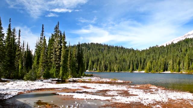 Washington State, Mt Rainier, Landscape