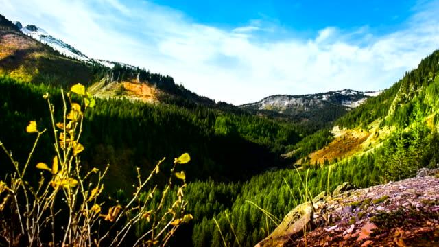 Washington State, Mt Rainier, park