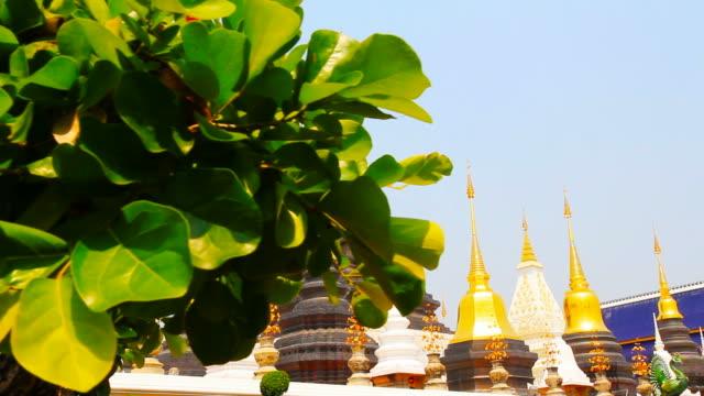 Wat Ban Den or Wat Den Sa Li Sri Mueang Kaen Temple in Chiang Mai Thailand