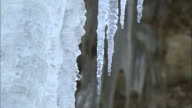 Water drips from icicles on a frozen waterfall.