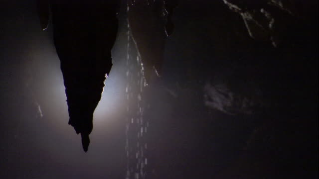 Water drips from stalactites in Deer Cave. Available in HD.