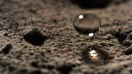 Water droplet falls onto earth.