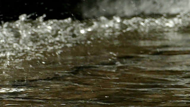 SLO MO of water drops falling onto the water surface