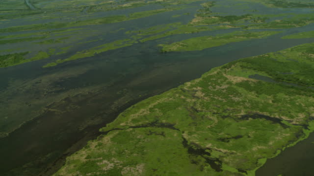 Water floods a vast bayou outside New Orleans, Louisiana.