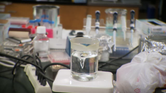 MS Water in spiral using magnetic stirrer and stir bar in lab / Toronto, Ontario, Canada