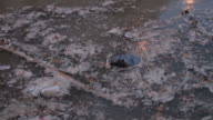 Water pollution: disastrous conditions of a river
