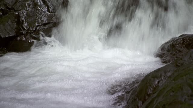 MS water rushing and foaming in rocky stream / Panama