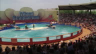 WS Water show at Miami Seaquarium / Key Biscayne, Florida, USA