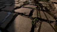 Water streams over cobblestones. Available in HD.