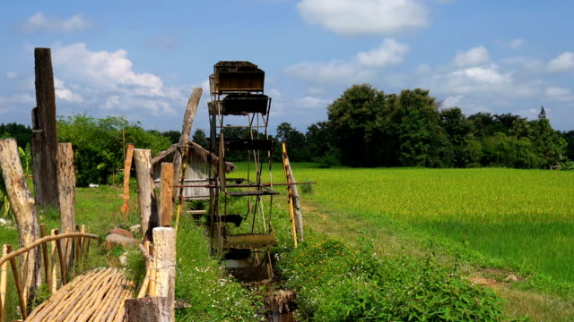 ZO, Water wheel in channel beside rice field