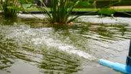 water with oxygen in the fish pond