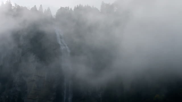Waterfall and forest appears out of mist, cliff face