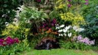 Wasserfall und orchid park