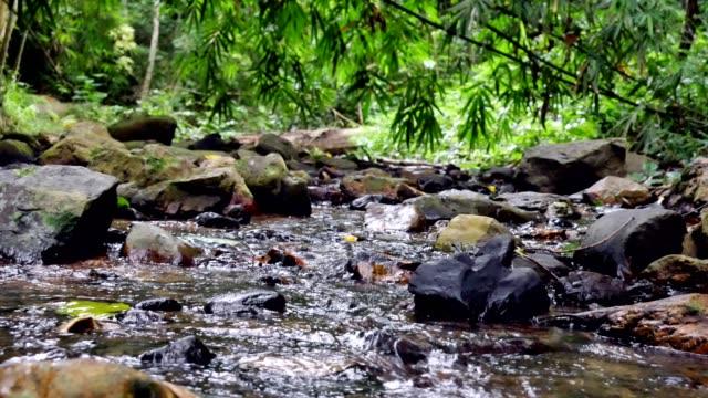 Vattenfall-kanalen bild skott.