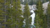 MS Waterfall cascading over granite in wilderness, looking through pine trees screen, Yosemite National Park, California