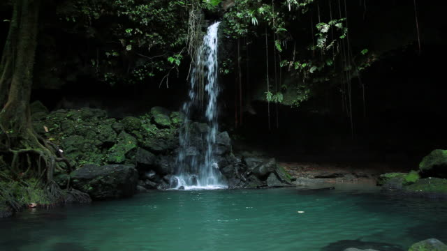 WS Waterfall / Emerald Falls, Dominica