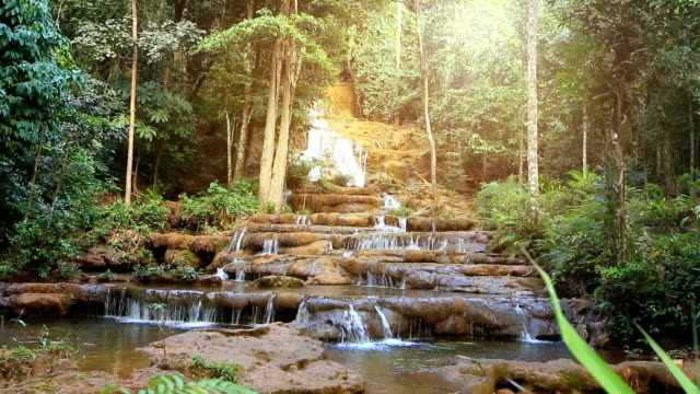 waterfall in deep forest dolly shot