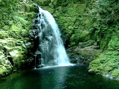 Waterfall in Japanese Mountain Forest