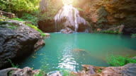 Waterfall in Tropical Paradise