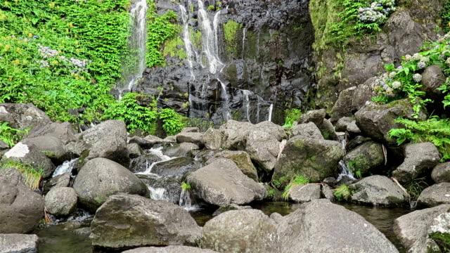 Waterfall Poco do Bacalhau, Faja Grande, Flores (Azoren)