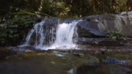 Waterfalls at Lamington National Park, Queensland, Australia