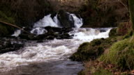 Waterfalls in a rural setting in Dumfries and Galloway, Scotland