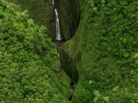 Waterfall's path