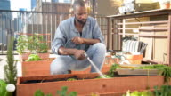 Watering roof garden plants - DOLLY SHOT