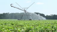 Watering the Crops