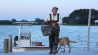 WS Waterman Carrying Basket of Fresh Oysters Down Fishing Dock with Dog / Oyster, Virginia, USA