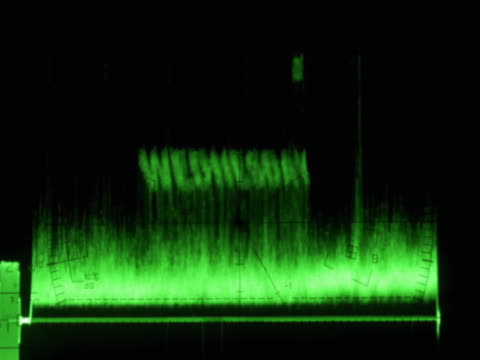 Waveform monitor with Wednesday text