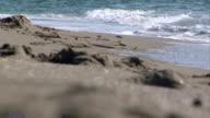 Waves at the shore