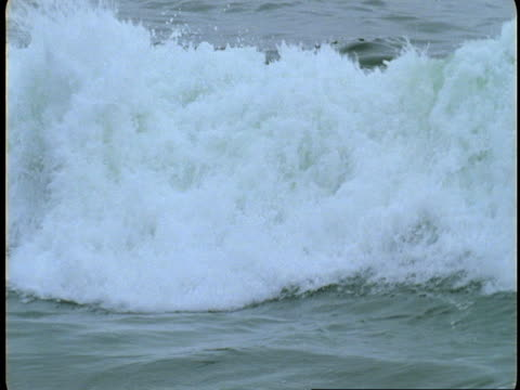 Waves crash into shore on Vancouver Island.