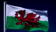 4K: Welsh Flag on Flagpole in front of Blue Sky outdoors (Wales)