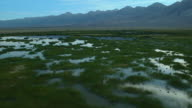 Wetlands At Base Of Sierra Nevadas