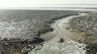 Wetlands on Canvey Island, United Kingdom