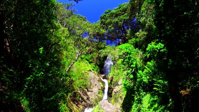 Whakatane Falls