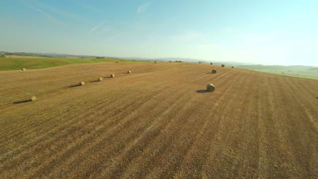 AERIAL Weizen straw bales in der Toskana