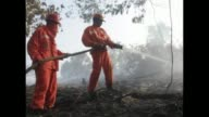 While Singapore and Indonesian environment ministers met in Jakarta to discuss their haze problem the battle against raging forest fires on Sumatra...