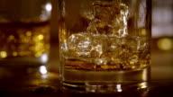 Whiskey (Dolly)