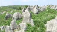White limestone pinnacles bristling over the green grassland.