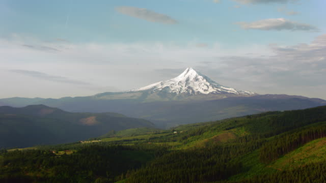 AERIAL White Mount Hood standing out of the green surrounding