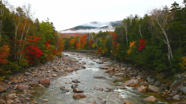 White Mountains National Forest