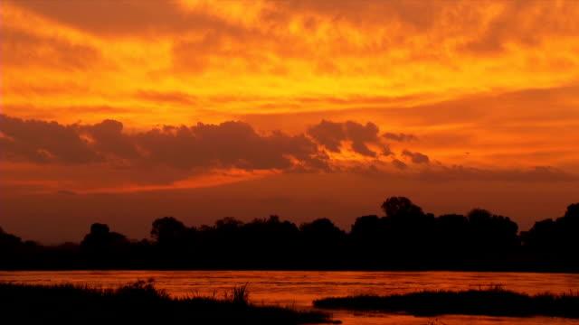 WS White Nile during sunset / Juba/ Central Equatoria/ South Sudan