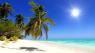 White sand beach and tropical island