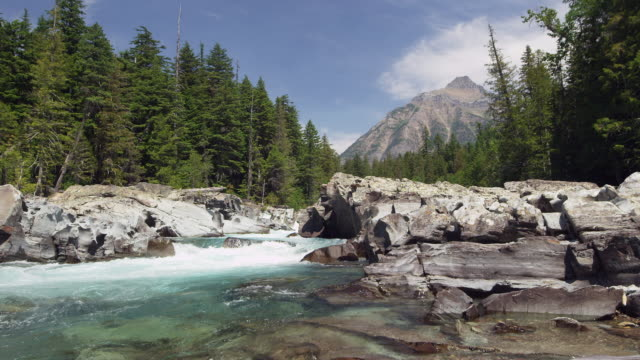 White water river and mountain in Glacier National Park slow motion