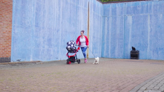 Wide Angle of Mother Running with Baby and Dog
