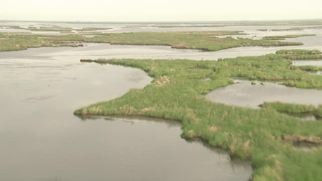 Wide Shot aerial push-in - Marsh islands cover much of a Mississippi River delta area. / New Orleans, Louisiana, USA