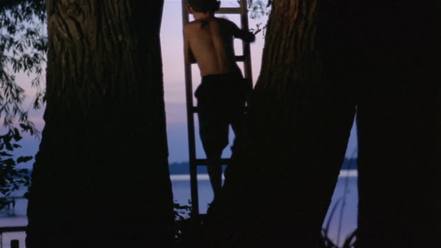 Wide shot boy climbing up ladder to treehouse at dusk/ friend at top giving him hand/ Long Pond, New York